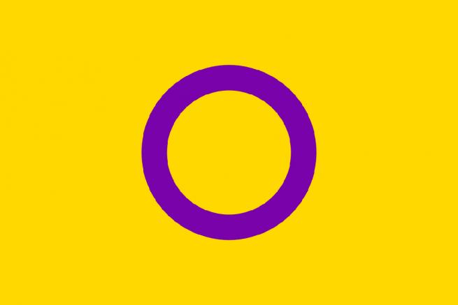 Bandeira Intersex