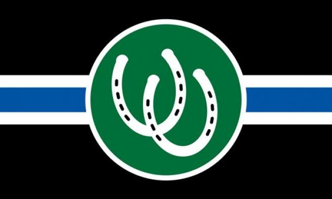 Bandeira de Pônei