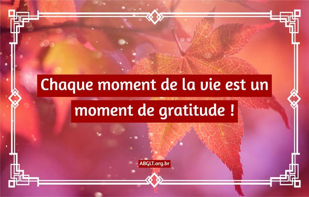 Chaque moment de la vie est un moment de gratitude !